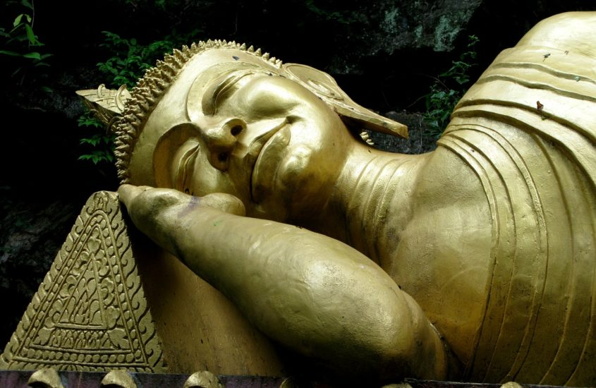 Sleep is the Best Meditation by Silvia Mordini