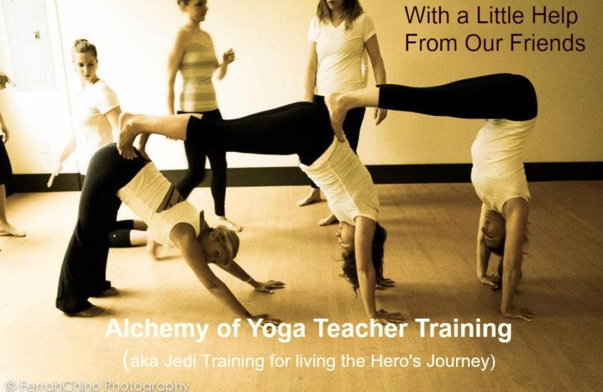 Financial Support Yoga Teacher Training