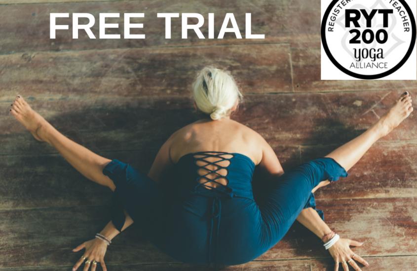 free trail alchemy of yoga teacher training
