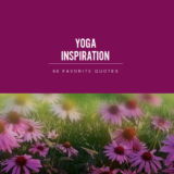 Best Yoga Quotes iNSPIRATION