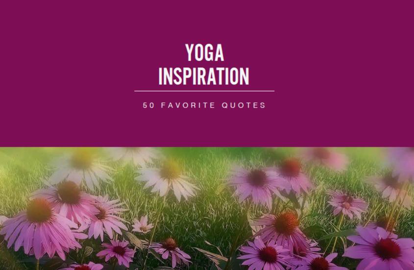 Best Yoga Quotes iNSPIRATION